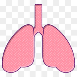 Lungs icon Lung icon Medical Elements icon