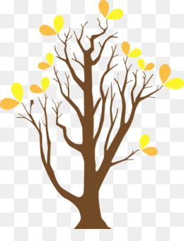 yellow tree branch plant leaf