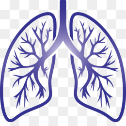 lungs COVID Corona Virus Disease