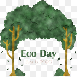 Eco Day Environment Day World Environment Day