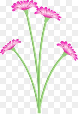 plant stem youtube