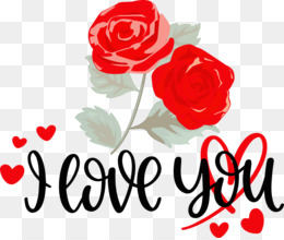 I Love You Valentine Valentines Day