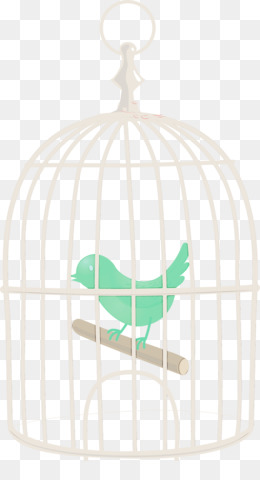 cage teal