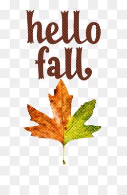 hello fall fall autumn
