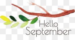 Hello September September